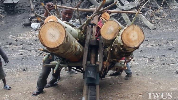 木质摩托车Chukudu