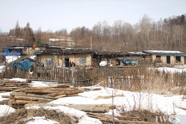 长白山最后的木屋村落