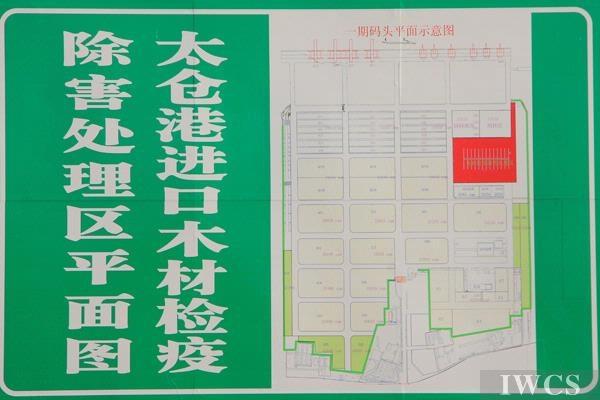 江海明珠太仓港——记全国海运木材进口第一大港