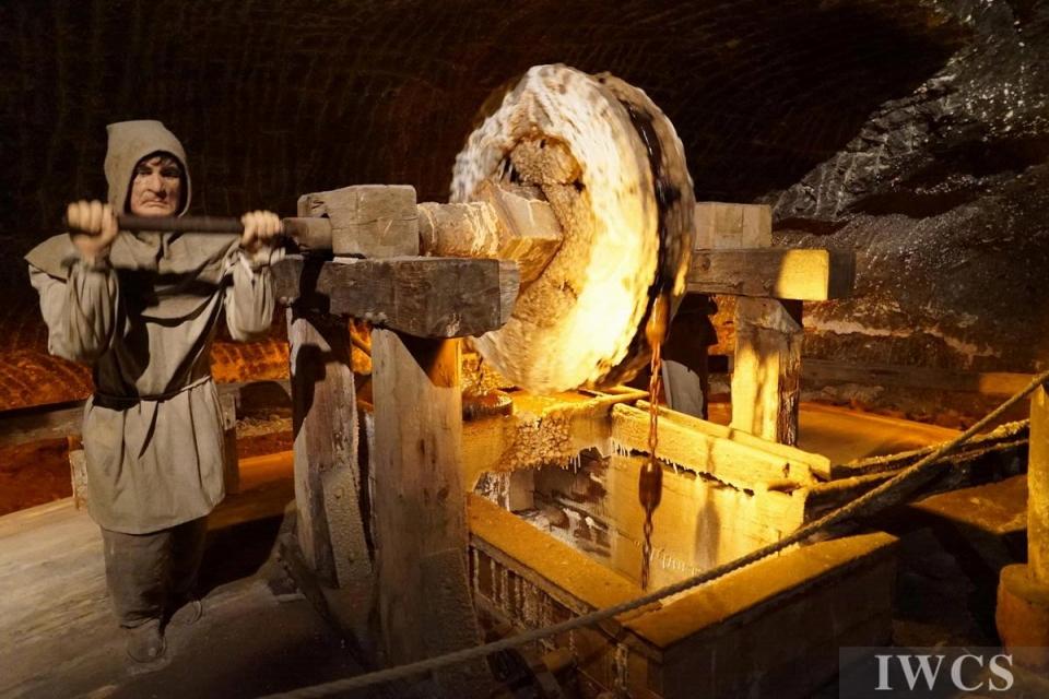 波兰维利奇卡盐矿中的木材